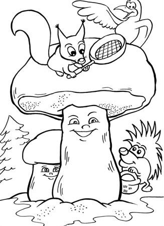 Животные ежик грибы белый гриб